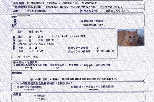 梅吉保険証書.jpg