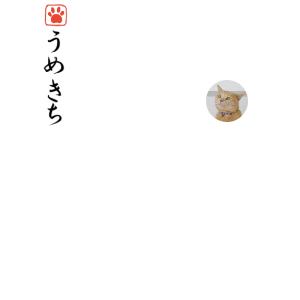 猫文字落款3.png