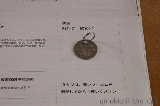 batch_かぶがぶDSC00734.JPG